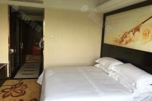 水城国际维也纳大床房