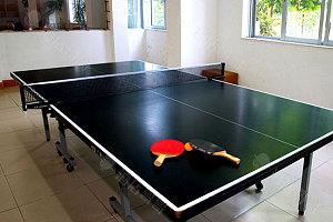 标准乒乓球台